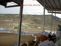Rodeo In Cody, Wyoming