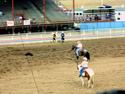 Another Rodeo Picture